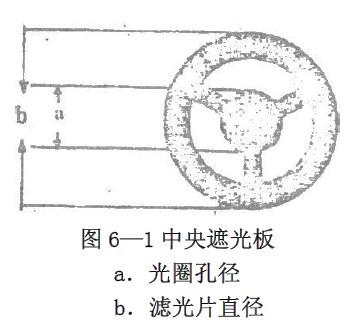 蟾蜍口腔手绘图